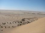 Dune 7-12